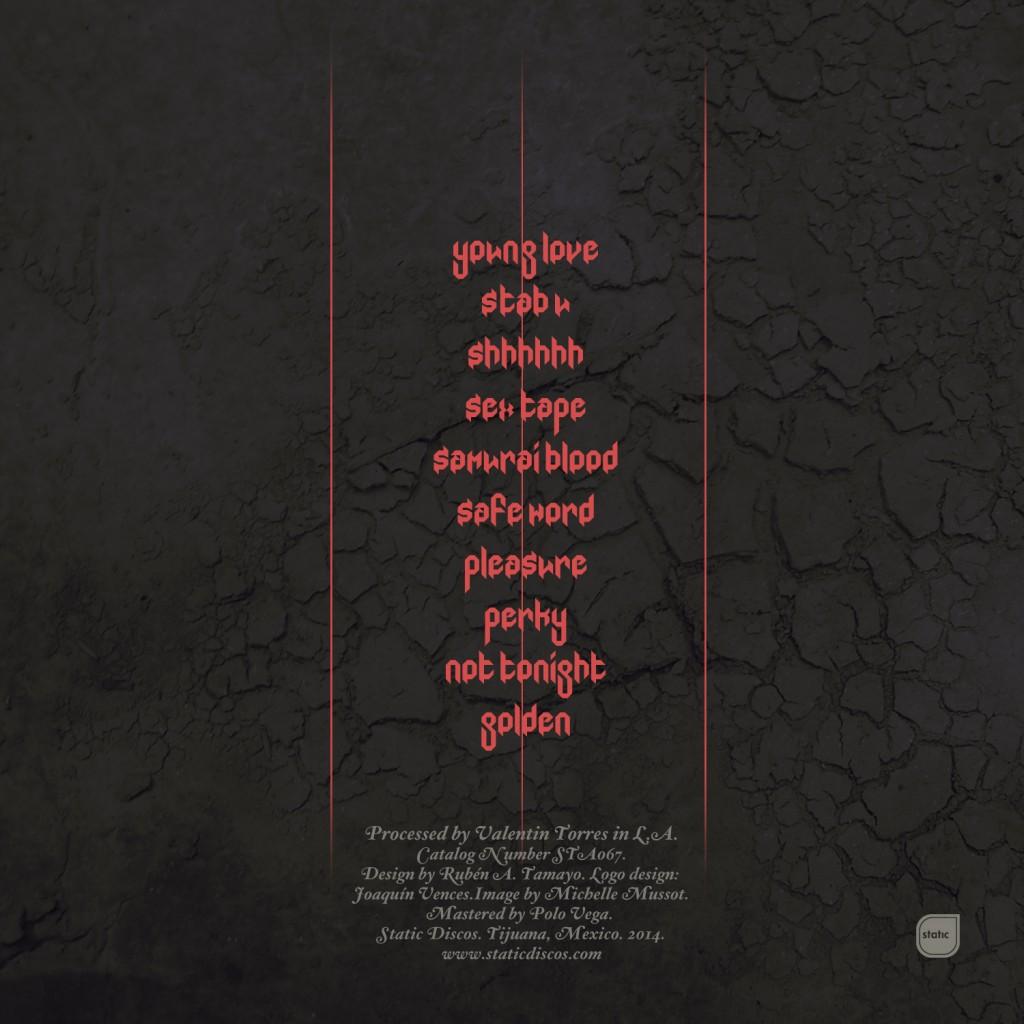 Vampire Slayer-Back cover